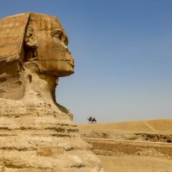 Sphinx has seen better days.